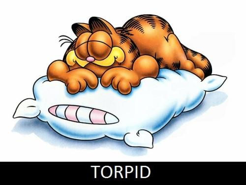 torpid