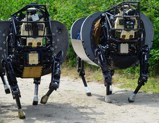 robot herd