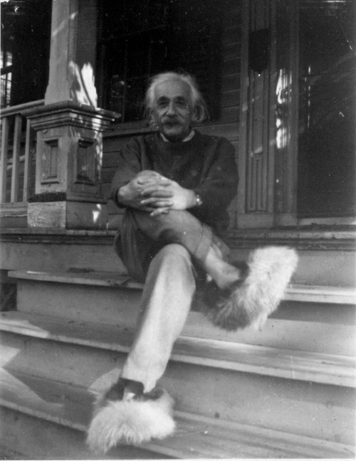 Einstein slippers
