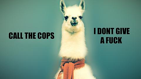 llama cops
